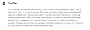 resume professional experience