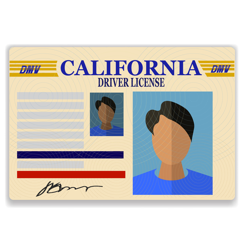 how to state your driver u0026 39 s license on your resume