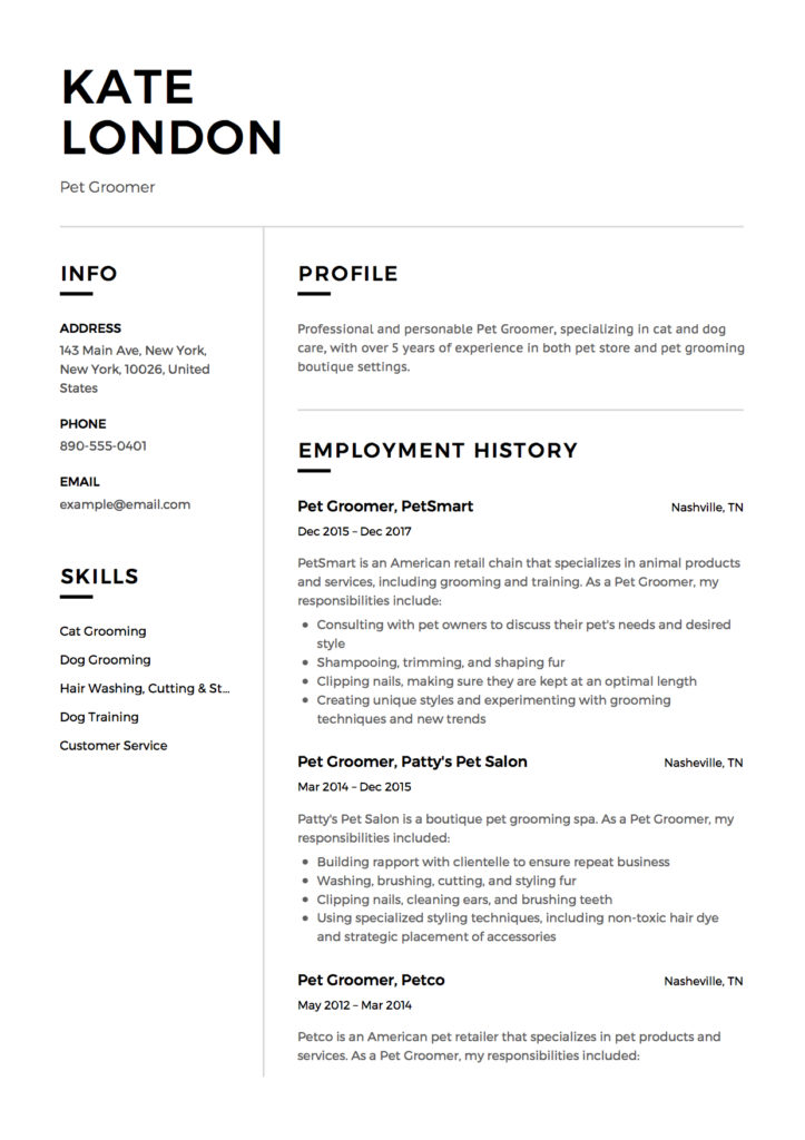 Resume Pet Groomer modern