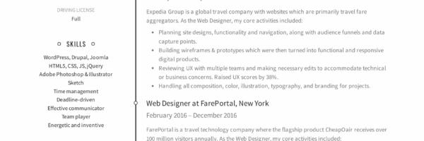 12 Free Web Designer Resume Examples 12 Samples Pdf