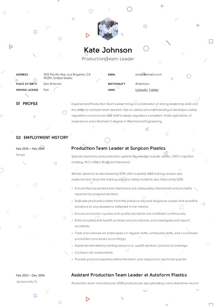 Production Team Leader Resume Sample