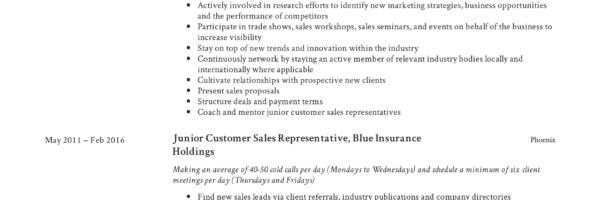 Guide Customer Sales Representative Resume