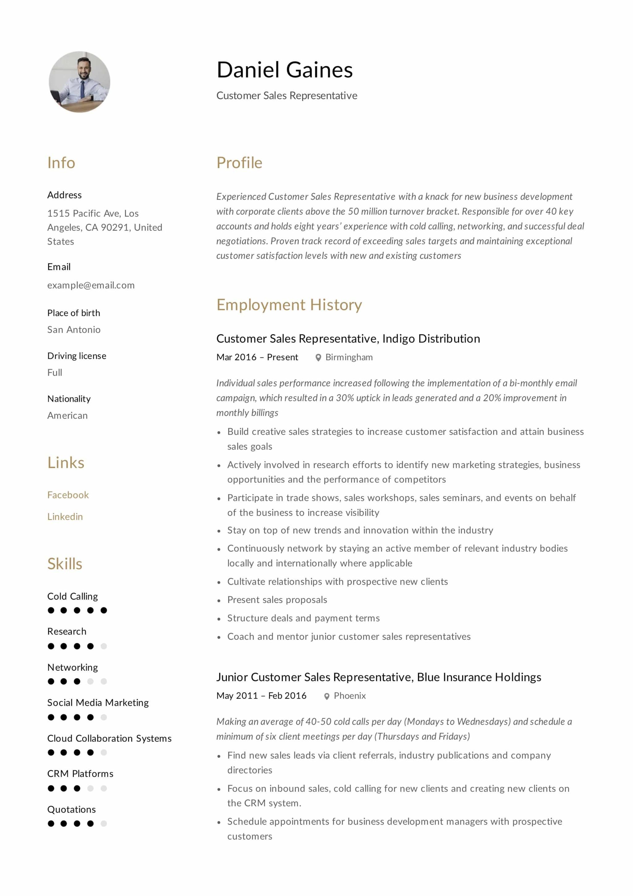 guide  customer sales representative resume