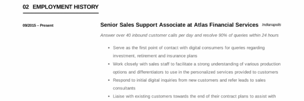 Sales Support Associate Resume Writing Guide