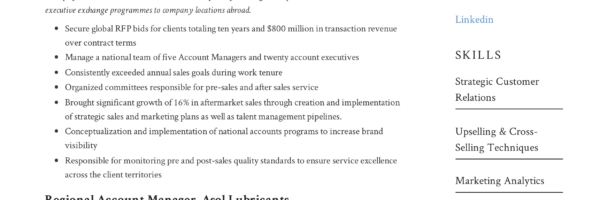 Account Manager Resume Writing Guide 12 Resume Examples