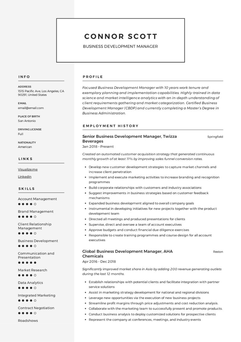 Business Development Manager Modern Resume Example