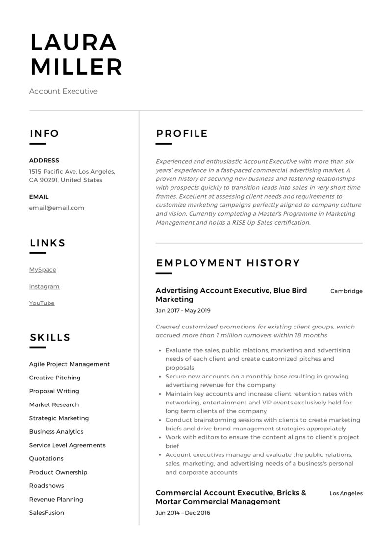 account executive resume  u0026 writing guide