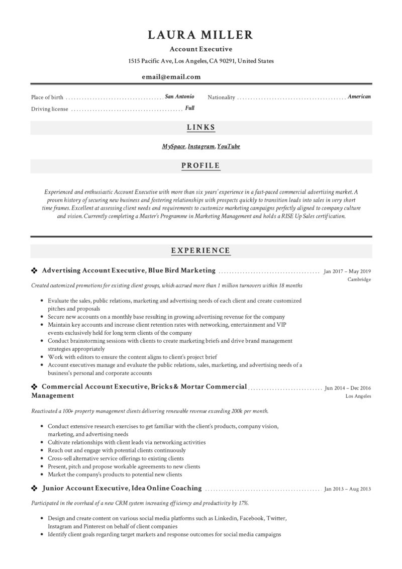Classic Resume sample Account Executive