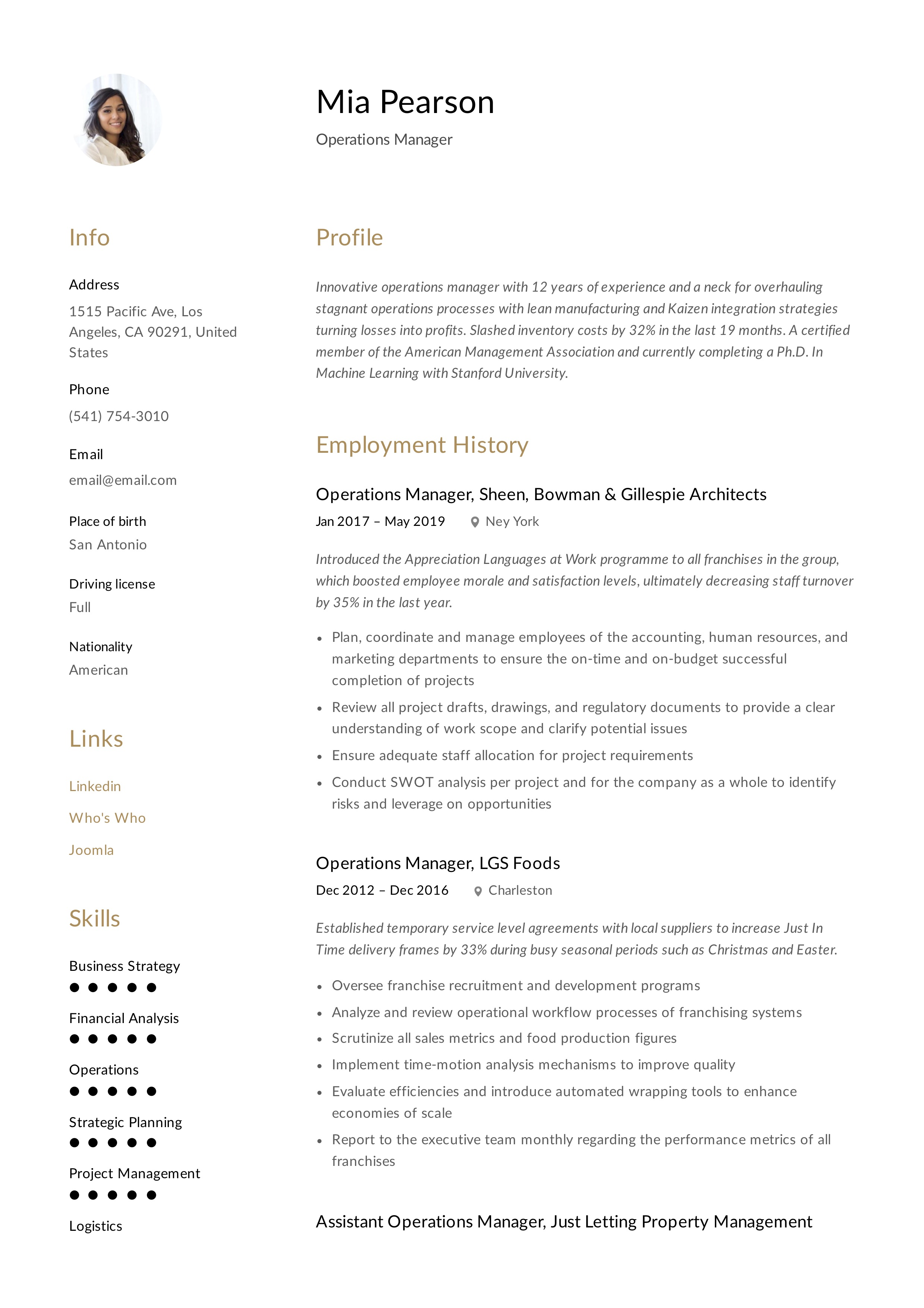 operations manager resume  u0026 writing guide